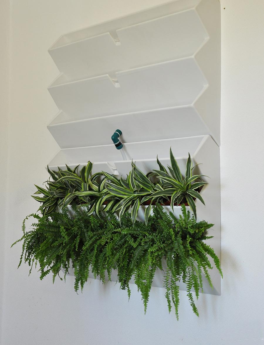 Система зелена стена своими руками